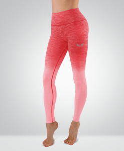 Bodykit Wear Ombre Coral Pink Leggings